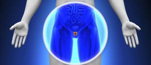Urologia bergamo brescia
