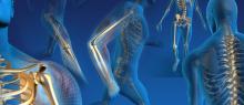 Ortopedia brescia bergamo